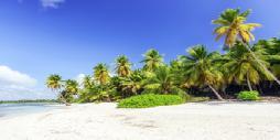 Punta Cana - �ltima Hora