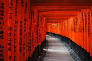 Japón al Completo: Tokyo, Monte Fuji, Kioto y Nara