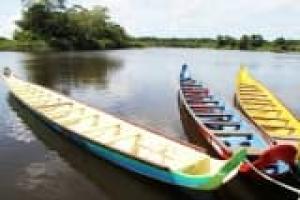 Au gré de l'Amazone