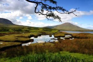 Prélude irlandais