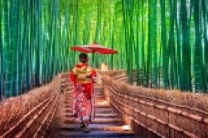 Découverte du Japon en liberté