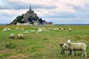 Découvrez Rennes et l'Abbaye du Mont-St-Michel le temps d'un week-end  - 3*