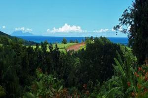 Domaine Tipareo avec Location de voiture