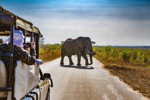 I LOVE AFRIQUE DU SUD - 12J/10N