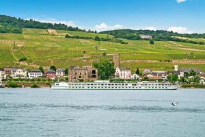 Week-End Spectacle sur le Rhin : HAPPY DAYS (SHO_HAP)